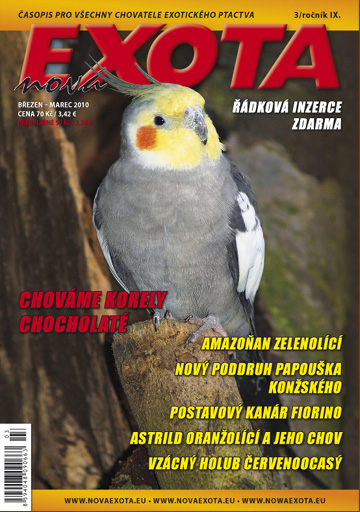 exota3_2010